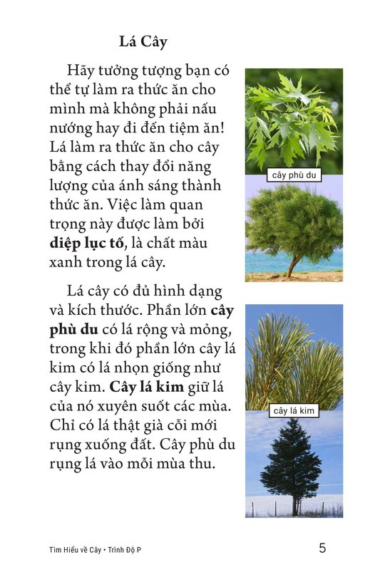 Book Preview For About Trees Page 5