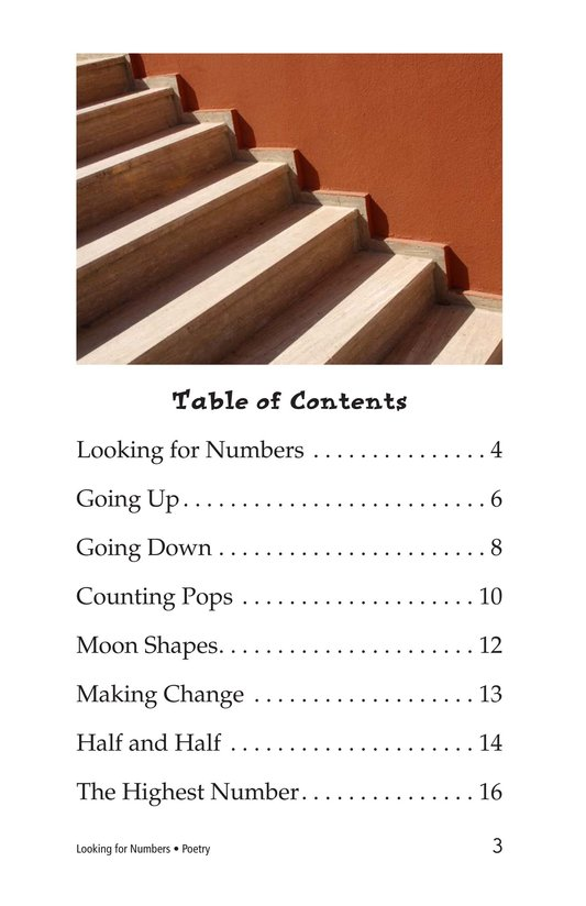 Book Preview For Looking for Numbers Page 3