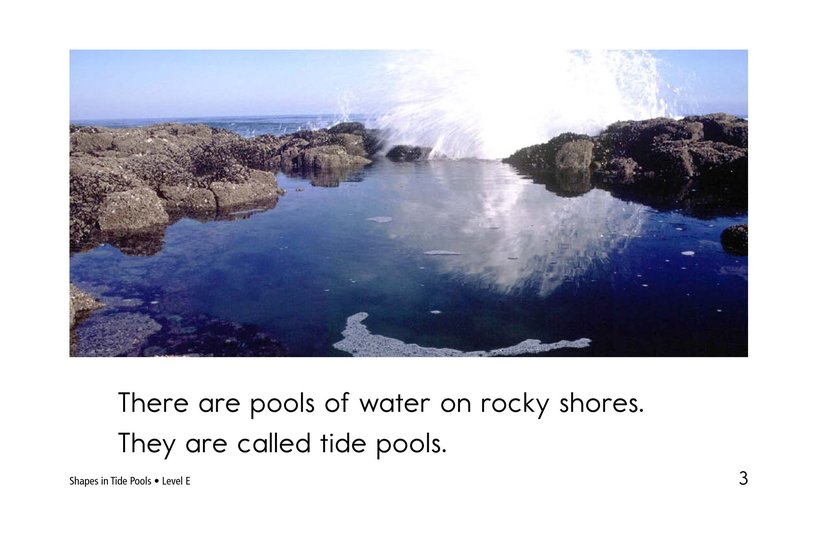 Book Preview For Shapes in Tide Pools Page 3