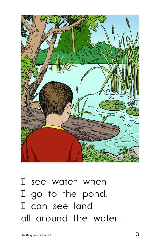 Book Preview For The Busy Pond Page 3
