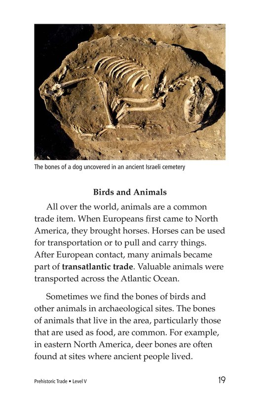 Book Preview For Prehistoric Trade Page 19