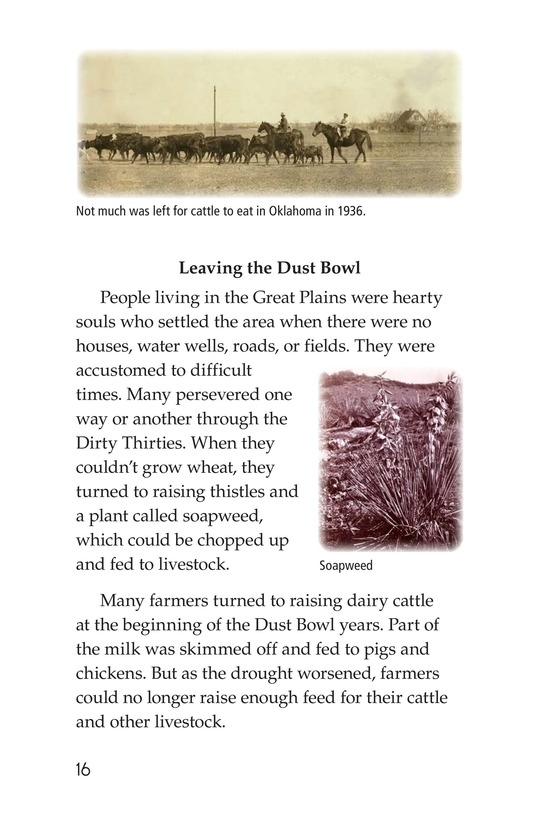 Book Preview For Dust Bowl Disaster Page 16