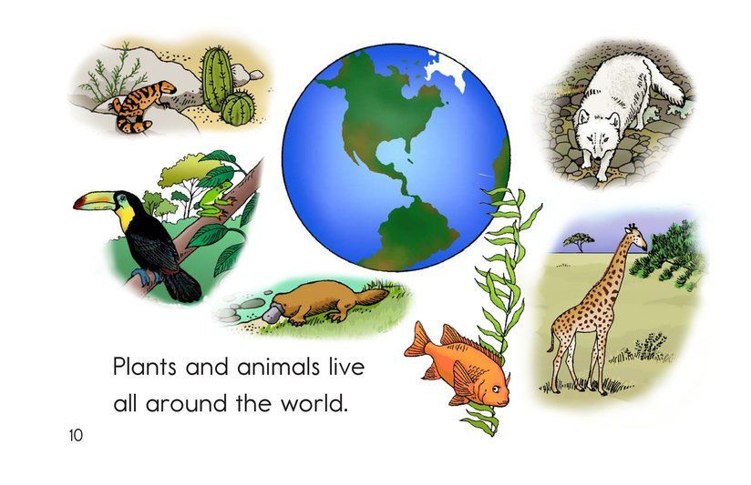 Book Preview For Places Plants and Animals Live Page 10