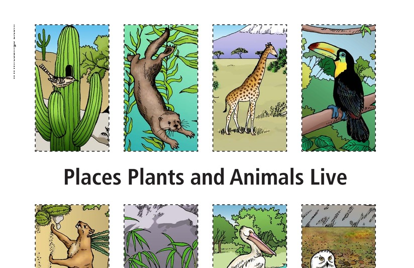 Book Preview For Places Plants and Animals Live Page 11