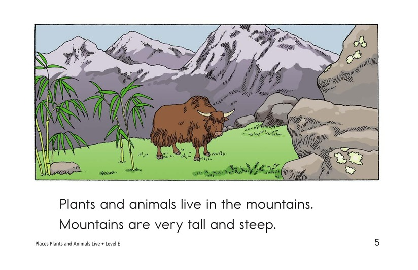 Book Preview For Places Plants and Animals Live Page 5