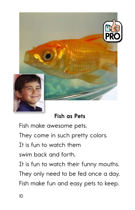 Book Preview For What Pet Should You Get? Page 10