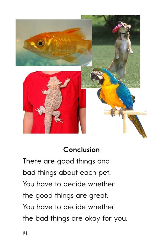 Book Preview For What Pet Should You Get? Page 14