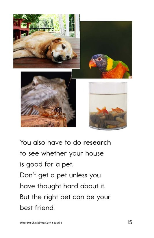 Book Preview For What Pet Should You Get? Page 15