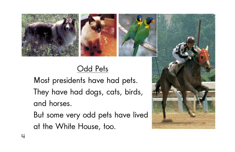 Book Preview For Weird White House Pets Page 4
