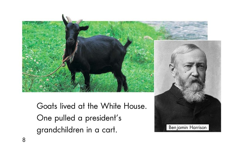 Book Preview For Weird White House Pets Page 8