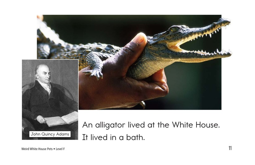 Book Preview For Weird White House Pets Page 11