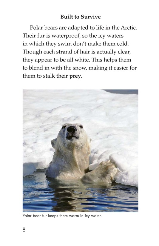 Book Preview For Plight of the Polar Bear Page 8