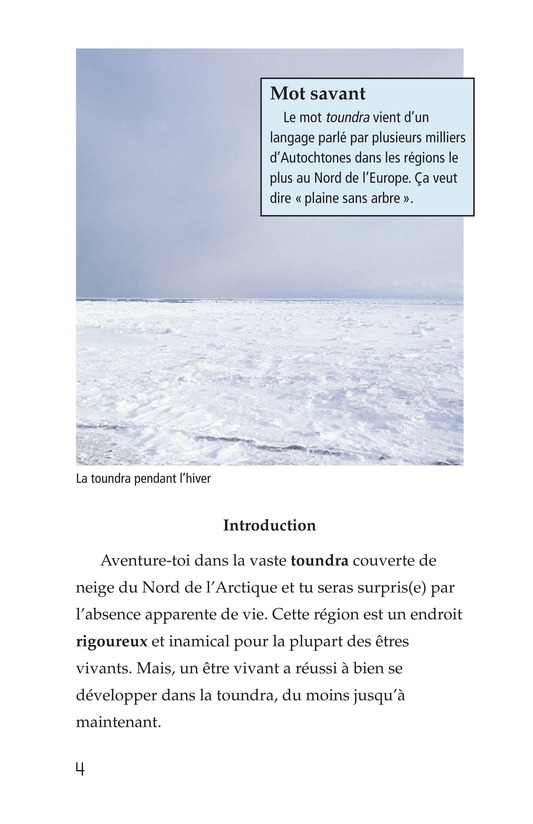 Book Preview For Plight of the Polar Bear Page 4